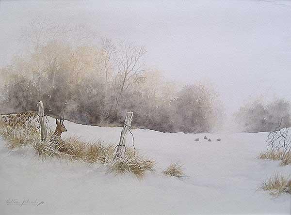'Chevreuil et perdrix' (c) Walter Arlaud